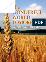 Wonderful  World Tomorrow