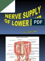 Nerve Supply,LL