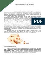 Analiza Diagnostic La SC Vel Pitar 1SA
