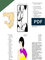 Leaflet Menyusui