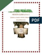 vestitorii_primaverii_nr_2_2011