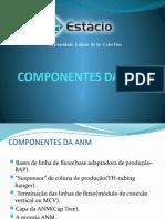 Componentes Da Anm Power Point 2