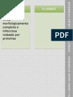 DIFERENCIAS ENTRE VIRION Y PLÁSMIDO