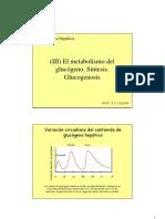 3_Glucogeno_sintesis