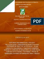 PRESENTACIÓN FINAL - YOVER y FLOR
