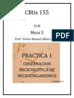 Practica 1 de Observacion Microscopica..