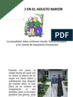 2011__-1_b-__ADULTO_MAYOR