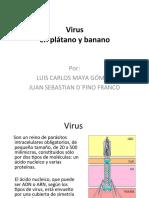 Virus en Platano y Banano
