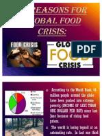 Food Crisis II
