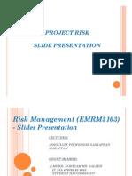 Assignment Risk Management (EMRM5103) - Presentation