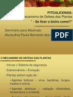 plugin-AnaBernardo_MSc