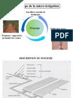 Principe de La Micro Irrigation
