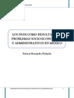 LOS NINI Protocolo de Investigacion