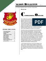 SPRING Newsletter 2011