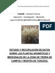 Botanica - Etnobotanica - Estudio y Recopilacion de Datos Sobre Plantas Aromatic As y Medic in Ales