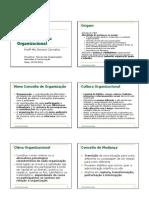 desenvolvimentoorganizacional