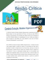 Reflexão Crítica de  Comércio Evolução, Modelos Organizacionais