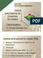 Capitulo-5-Sistemas-de-Ecuaciones-No-Lineales-MA-33A (1)