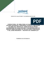TDR Punchauca - Expediente y Obra