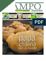Las papas chilenas entre Tajikistán y Malawi