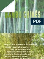 BambuChines