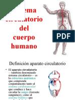 sistema-circulatorio-1220824138890425-9