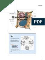 Struktur Dan Fungsi Sel Tumbuhan