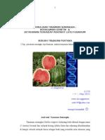 Pemuliaan Tanaman Semangka untuk ketahanan terhadap penyakit layu fusarium : Tinjauan Pustaka