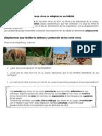 Guias Plantas y Animales Nb2