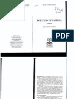 52894151-Derecho-de-Familia