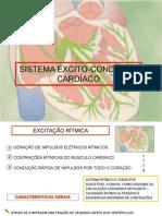 Sistema Excito-condutor Cardaco