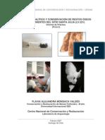 ESTUDIO ANALÍTICO Y CONSERVACIÓN DE RESTOS ÓSEOS PROVENIENTES DEL SITIO SANTA JULIA (LV.221) Informe de Práctica. 2007