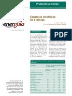 Centrales Elctricas de Biomasa