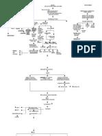 TAHBSO pathophysiology