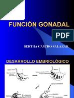 13.Funcion Gonadal