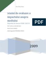 Studiu de Evaluare a Impactului Asupra Mediului Viseu