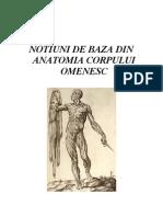 39666404 Curs Anatomie