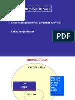 5a. Tyrosine kinases