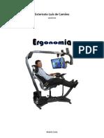 2. Ergonomia