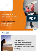 3- Netbeans the Only IDE