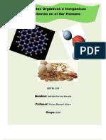 Moleculas Organicas e Inorganic As