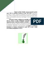 Raportbuget2006definitiv_Parlament