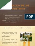 PRODUCCIÓN DE LOS ECOSISTEMAS