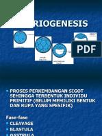 06 Embriogenesis Internet)