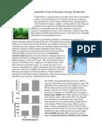 Alfalfa - The Best Biomass Energy Crop