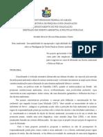 Bem Ambiental - susceptibilidade de apropriação e apllicação da ultima ratio - uma incursão sobre a tutela penal no Direito Ambiental Brasileiro