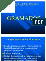 PLANTAS ORNAMENTAIS -GRAMADOS