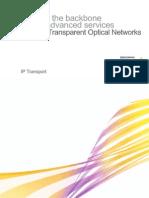 SURPASSTransparentOpticalNetworks[1]