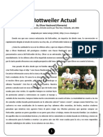 El Rottweiler Actual by Oliver Neubrand (Germany) - Spanish