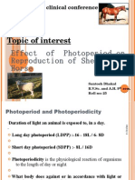 effect of photoperiod on reproduction of sheep and horse